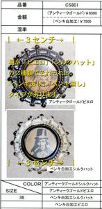 cs801_kaisetsu.jpg